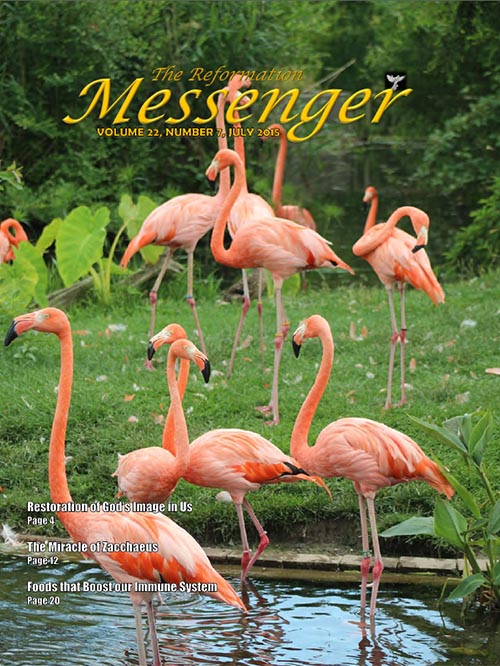 The Reformation Messenger - July 2015